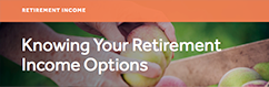 Knowing your Retirement Income Options